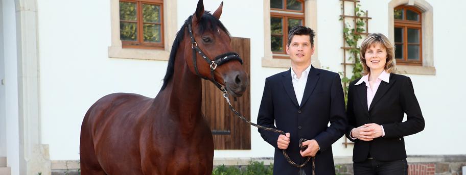 Ausbildung Akademie-Mensch-Pferd